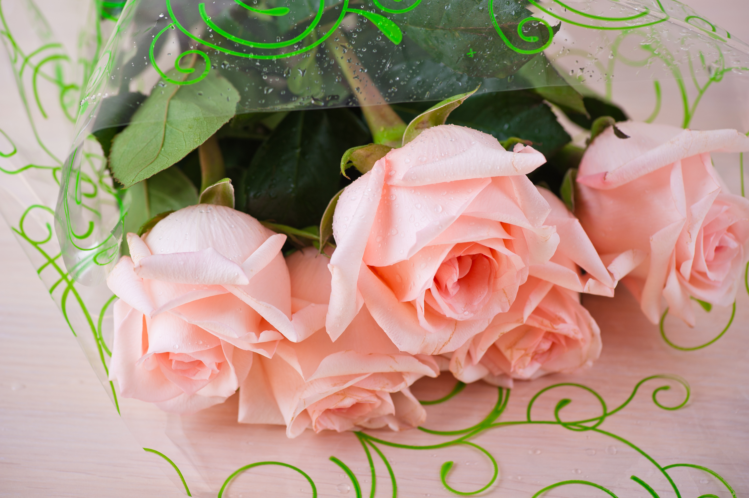 Rose Care Tips: What and When to Feed Roses Over the Summer